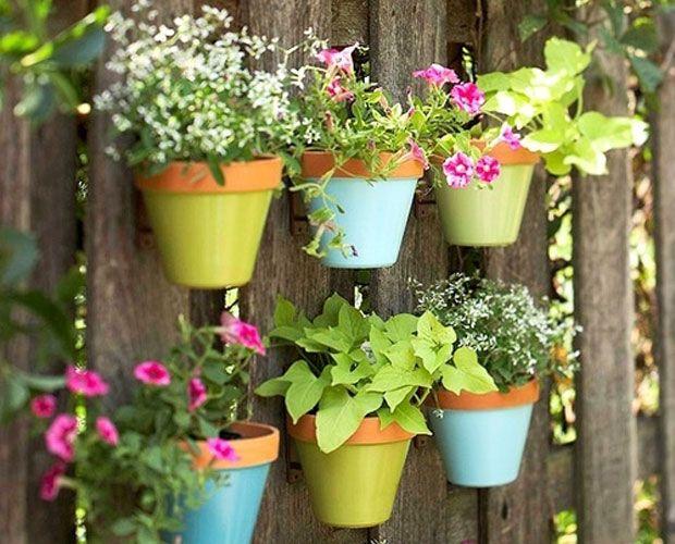 Φυτά καλύτερα, πιάνουν λιγότερο χώρο