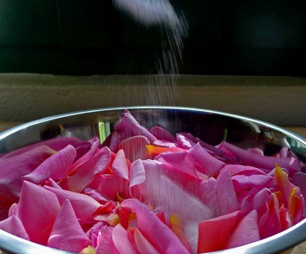 Image result for ροδοπεταλα γλυκο κουταλιου